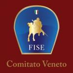 fise_veneto_logo_a