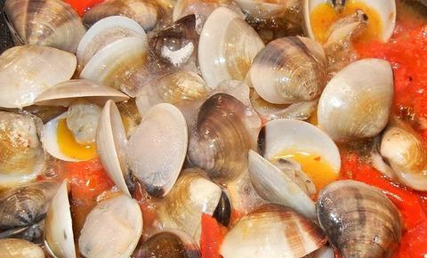 clams-706132_640