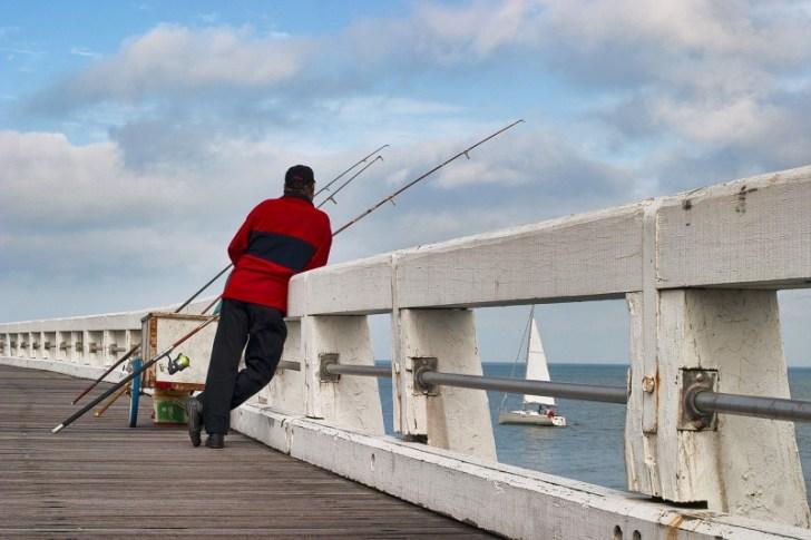 プライヤーで釣りを安全で快適に