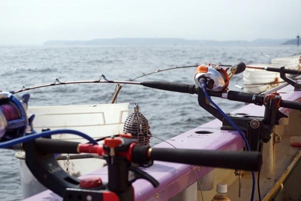 イサキを釣って食べよう!