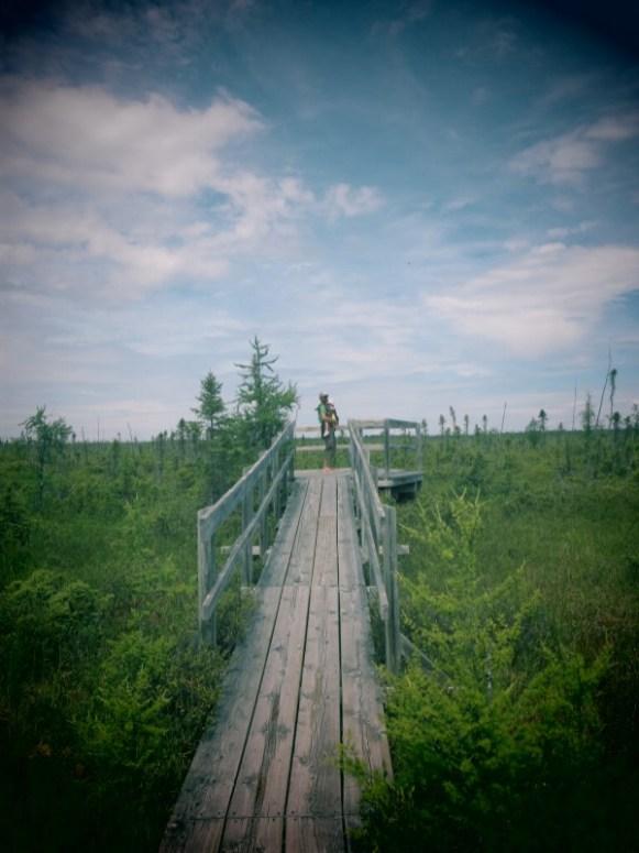 parc national de la pointe taillon - Quebec