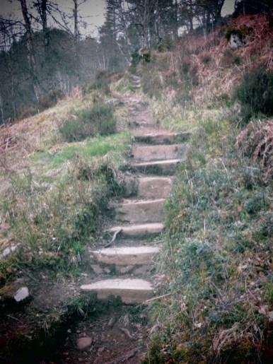 marches dans le Glen Affric