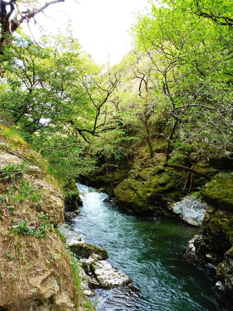 le nive dans le pays basque