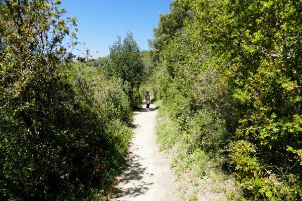 Sentier autour de Villeneuvette - Hérault