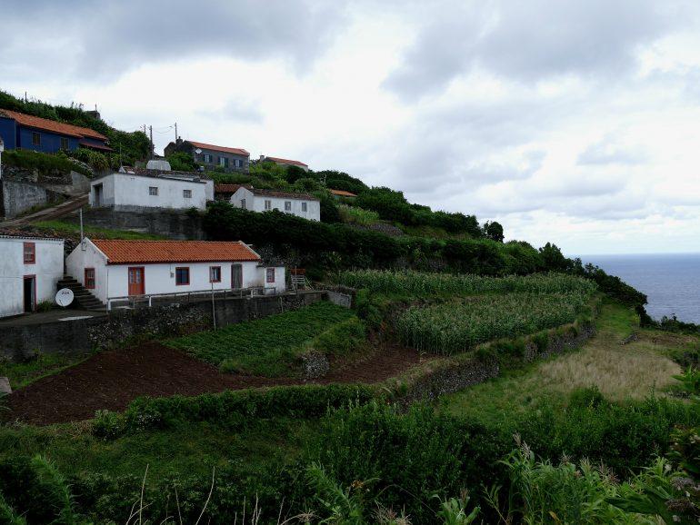 Ponta Ruiva - Flores (Açores)