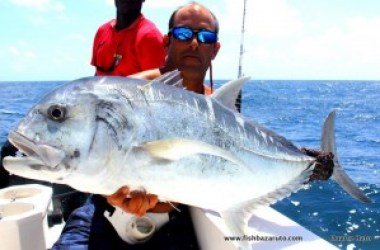 Although fishing for GT´s can be good year round of Bazaruto, the peak summer months are normally the more consistent for numbers & size of fish.