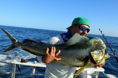 Dorado have been around in pretty good numbers and fairly good sizes