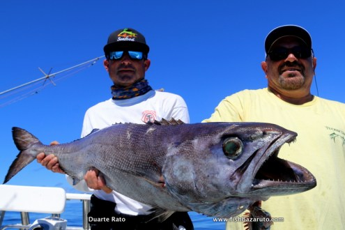 Dave Tucker and John Hobart with a Escolar Oil Fish caught while day time deep dropping in 600 meters of Bazaruto while targeting Broadbill.