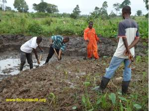 Construction of fish pond in Ghana (01)