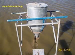 Sudan (demand feeder)
