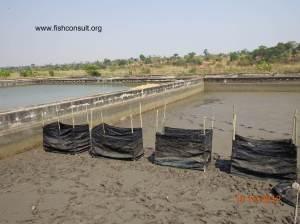 Zambia - NARDC facility (01)