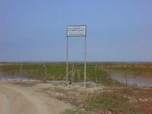Peru - mangrove restoration project at shrimp farm - Tumbes