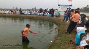 Promoting tilapia culture in field days in Pakistan (01)