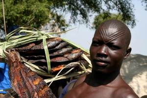Smoked fish in Terekeka (South Sudan)