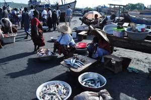 Sekondi fish market (Ghana)