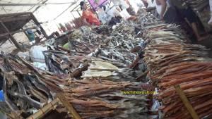 Dried fish market in Myanmar (02)