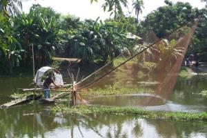 Lift net fishing in Bangladesh