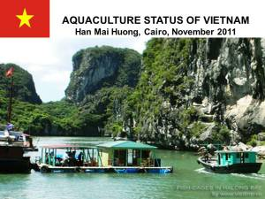 cover-country-report-vietnam-2011