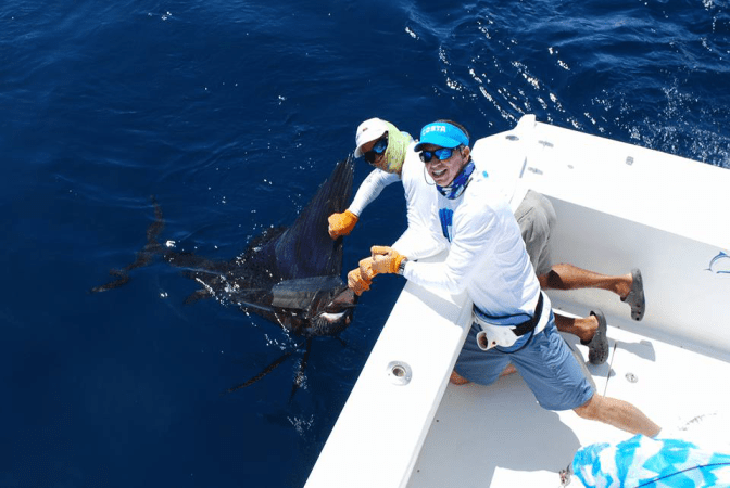 Costa RIca Sailfish worth more alive than dead