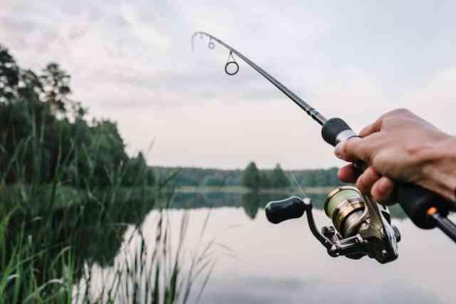 Drop Shot Fishing