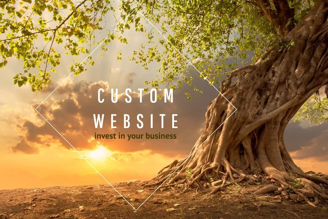 Custom WordPress Site Investment