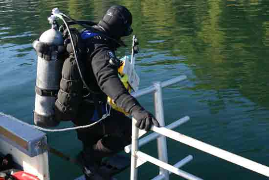 Photo of diver representing the American Fisheries Society about Section page