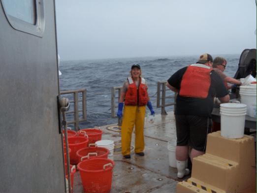 Sorting the catch on deck of the R/V Hugh R. Sharp. Photo courtesy of Carol Glor.