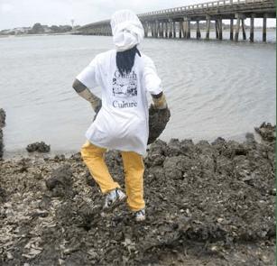 Queen Quet oyster replanting.