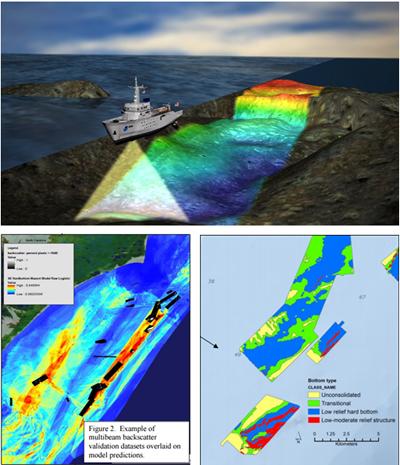 Fishery-independent habitat survey data along the southeast United States region. Credit: Todd Kellison, NOAA Fisheries