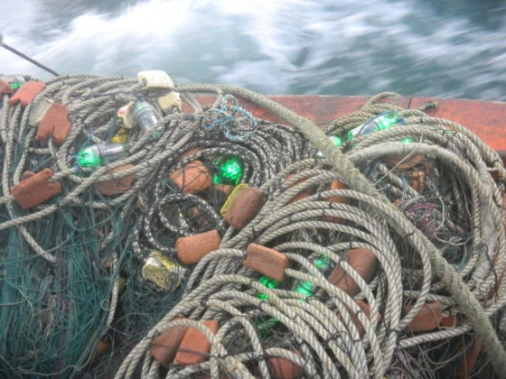 LED lights used at sea. Credit: University of Exeter