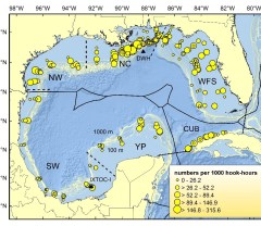 Featured Paper: Comparative Abundance, Species Composition, and Demographics of Continental Shelf Fish Assemblages throughout the Gulf of Mexico image