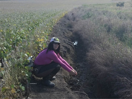 Prior to current management, erosion was a serious issue on Rabinowitz land. Here, Ruth sees an ephemeral gully on the family's Clarke County farm for the first time.It has since been repaired and seeded with perennial grasses.