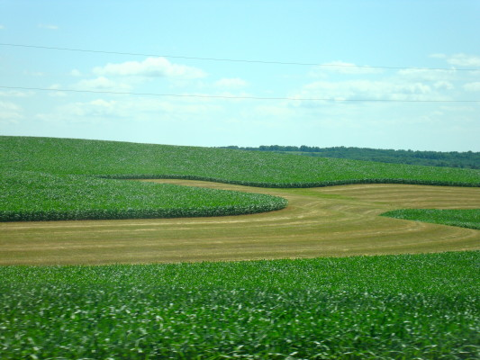 Conservation practices such as contour strip farming are manageable when landowner and tenant work together.