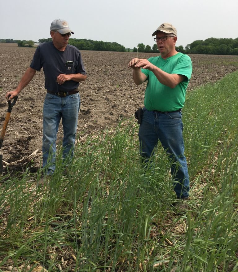 Farmers showing cover crops