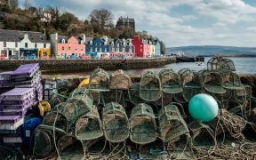 Crab-fishing-tobermory
