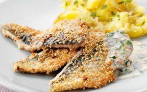 Herrings in crispy oatmeal with mustard sauce