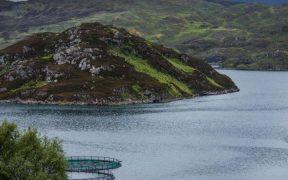 Aquaculture Industry Engagement Fund