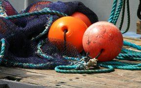UK FISHING FLEET TURNOVER