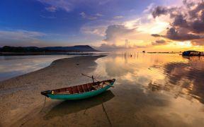 Vietnamese pangasius exports rise