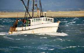 NEW ZEALAND CONSULTATION ON CATCH CHANGES