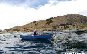 UMITRON SECURES FUNDING FOR PERU AQUACULTURE PROJECT