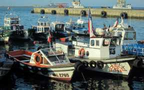 USA rebuilding once depleted fisheries