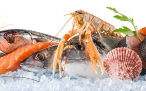 NEW RECORD FOR NORWEGIAN SEAFOOD EXPORTS SET