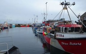 Busy time for Fraserburgh fishing fleet