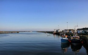 NFFO WARNING OVER POST BREXIT FISH POLICY