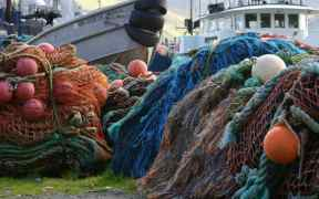 NORTH CAROLINA FISHING FLEET