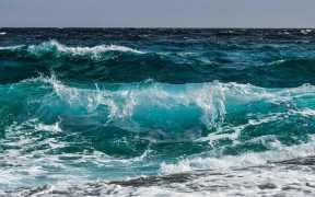 OCEAN LITERACY FOR ALL TENDER