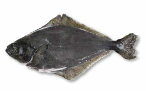 DIRECT SEAFOODS WARNS CHEFS OF HALIBUT SUSTAINABILITY