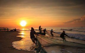 VIETNAMESE BASA EXPORTS UP