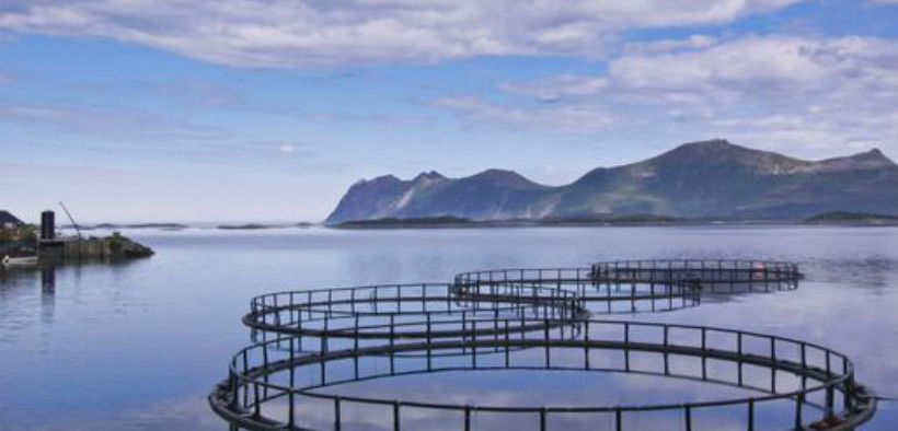 MORE SPACE FOR AQUACULTURE